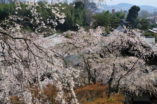 天龍寺の望京台