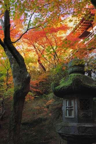 京都永観堂
